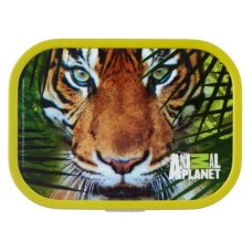 Lunchbox Campus Midi Animal Planet Vert Tigre